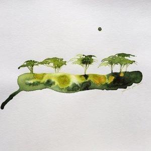 Green acacia