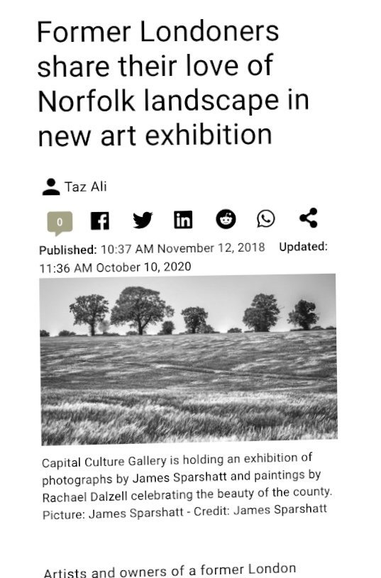 Capital Culture Gallery featured in the EDP 2018
